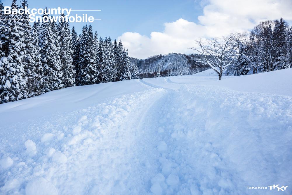 雪に立つ車体