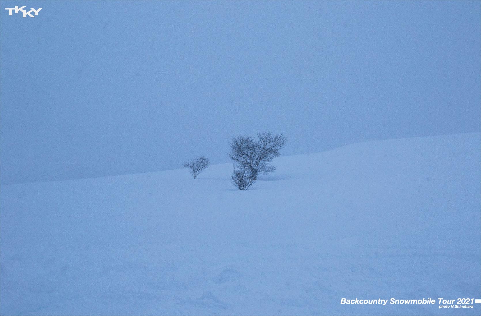 17風景雪